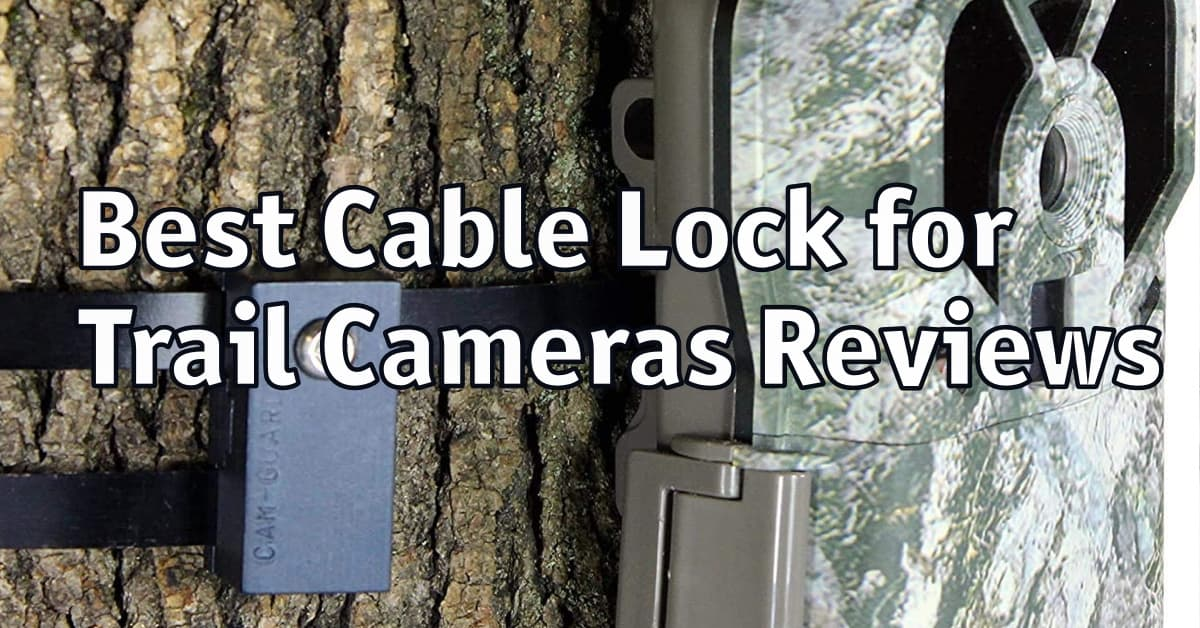 Best Cable Lock for Trail Cameras Reviews
